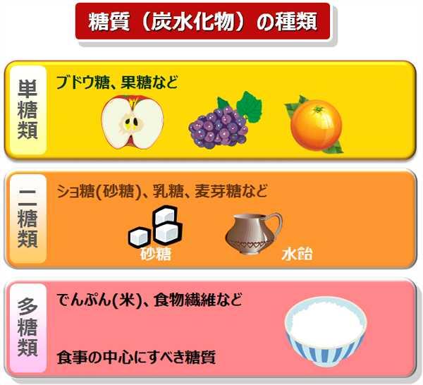 食べ物 炭水化物